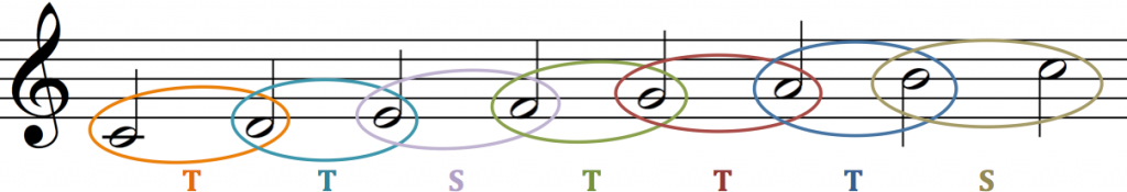 Major Scale Pattern: TTSTTTS